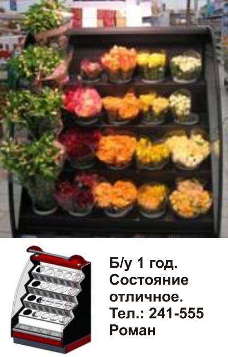 Холодильная витрина для цветов б у купить